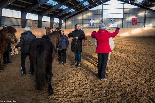 2017 På kursus i horsemanship