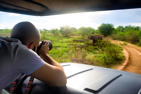Aaron Northcott Photographing Wild Elephants in Sri Lanka