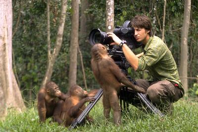 Orangutan Camera Assistant Workshop
