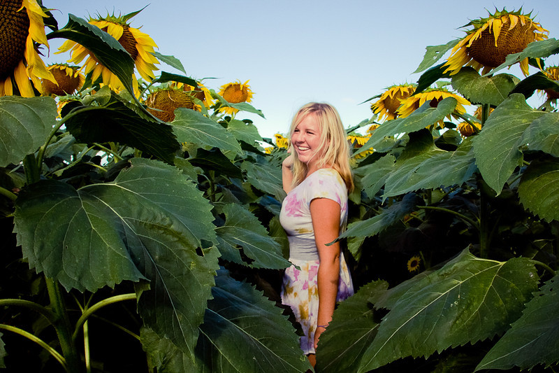 perpetual summers and sunflower fields are the best!