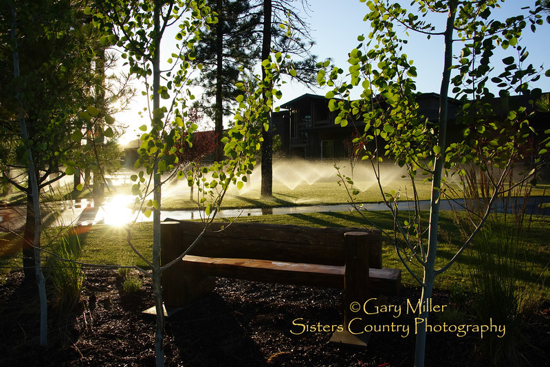 Sprinklers bathe the walkways and grass at the Sisters High School after a long day in the sun. Sisters, Oregon on July 15, 2013.  Image taken as part of Project Dayshoot+30, #dayshoot30, for the Oregon Historical Society - Copyright © 2013 Gary N. Miller, Sisters Country Photography
