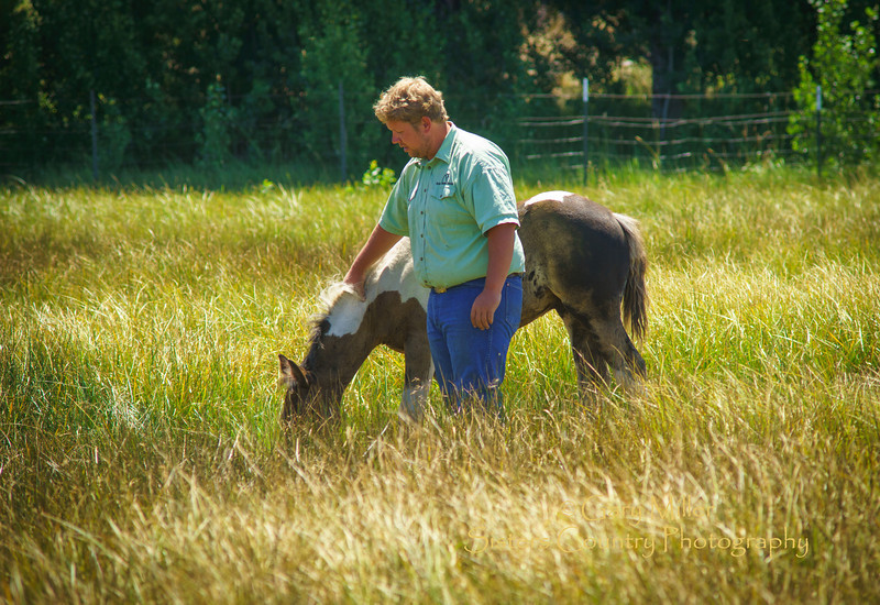 Cody Koch, the young man who owns and runs 80 head of horses at Black Butte Stables on Black Butte Ranch in Sisters, Oregon strokes one of this years contingent of 9 young foals that he will be raising and working with over the years. Cody has been working with horses since he was a young boy and counts himself as one of the luckiest people he knows to be doing something he loves so much every day of his life. This Image was taken as part of Project Dayshoot+30, #dayshoot30, for the Oregon Historical Society on July 15th, 2013 - Copyright © 2013 Gary N. Miller, Sisters Country Photography