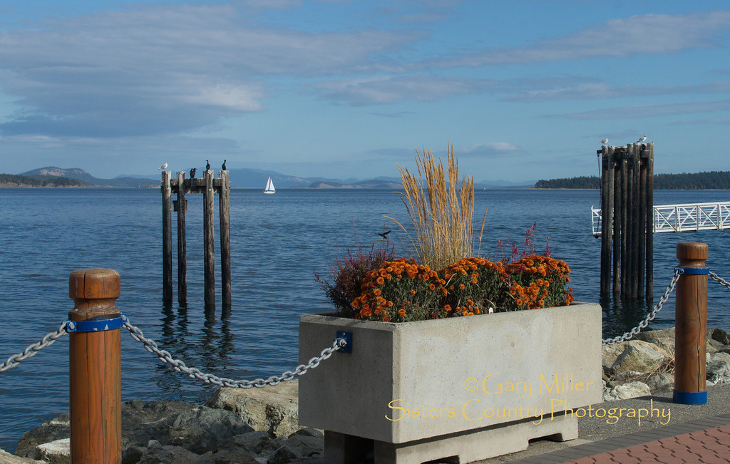 The boardwalk in Sydney offers a scenic view of Haro Straight with the San Juan Islands behind in the distance. Images from a sailing holiday to the Canadian Gulf Islands in October of 2012 - Gary N. Miller - Sisters Country Photography