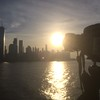 NYC skyline at dawn