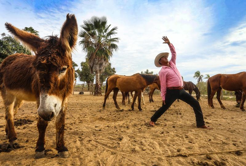 El Ranchero ~ Baja California, Mexico