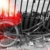 Beijing Bicycle  2009 ©Lewis Sandler Beijing Video Studio