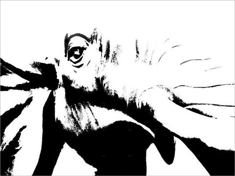 Beijing Elephant (at Thai Restaurant) ©Lewis Sandler Beijing Video Studio