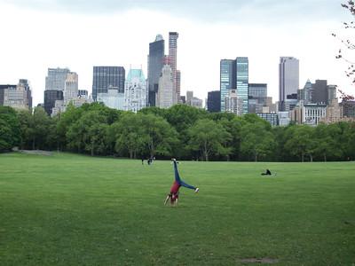 Bekkie Atwood - Central Park, New York City, New York
