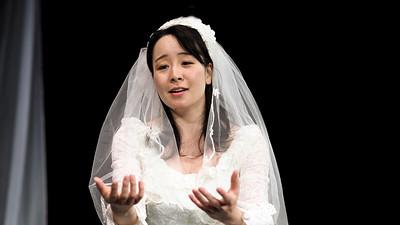 Lucia di Lammermoor (video)