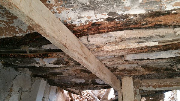 Modern timber support very rotten timber floors.