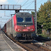 SNCF, 36019 (91 87 0036 019-4 F-SNCF) at Gent Dampoort on 3rd October 2014 (2)