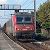 SNCF, 36019 (91 87 0036 019-4 F-SNCF) at Gent Dampoort on 3rd October 2014 (2)
