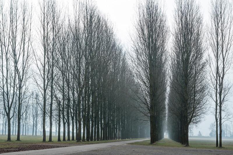 THE NETHERLANDS-BIDDINGHUIZEN