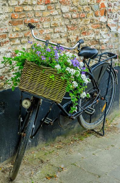 Belgium-Brugge-Bicycle at rest