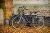 Belgium-Brugge-Minnewater bicycles
