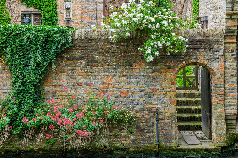 Belgium-Brugge-Canal life