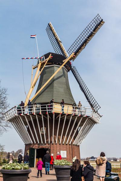 THE NETHERLANDS-LISSE-KEUKENHOF