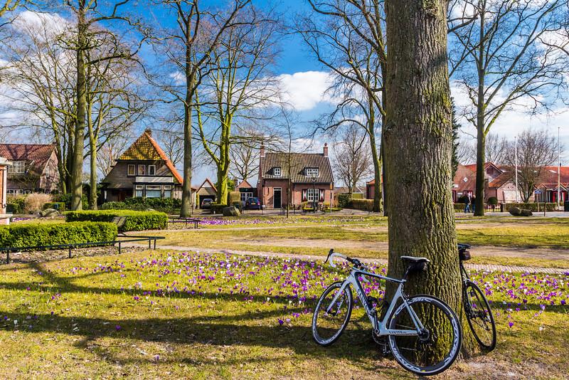 THE NETHERLANDS-HAARZUILENS