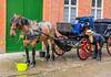 Belgium-Brugge-Daily work prep