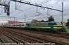 2711_b_AntwerpBerchum_Belgium_30072013