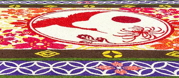 Detail of flower carpet 2016 in Brussels