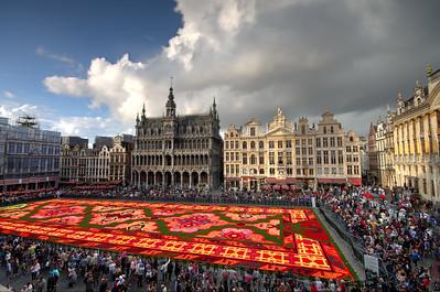 Brussels Carpet of Flowers
