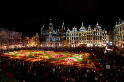 Carpet of Flowers at night