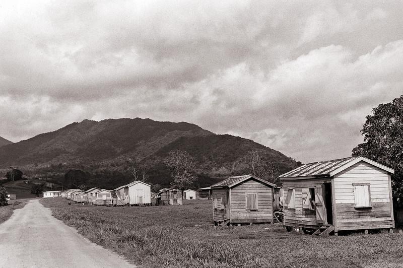 The Road to Dangriga