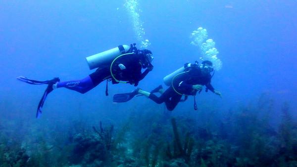 Belize Divers