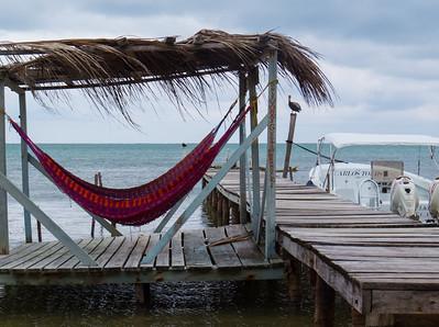 Yuma's hammocks