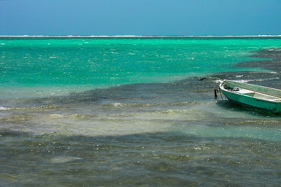 Caye Caulker Reef