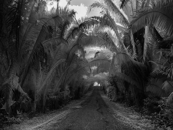 Belize December 2015