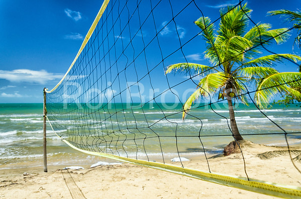 Ready for some tropical volleyball