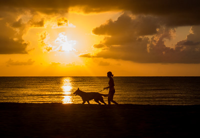 Shepherd Sunrise