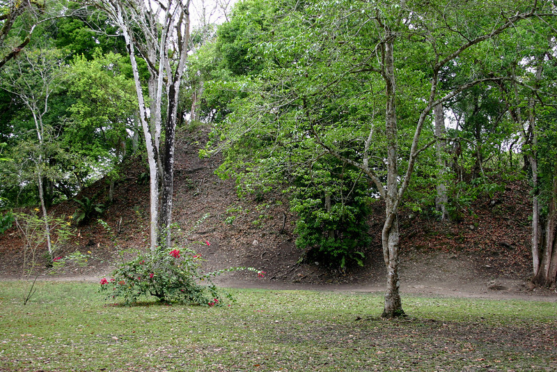 An untouched mound on the edge of the plaza gives an indication of the difficulty in taking ancient buildings back from the forest.