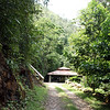 Maya King Waterfall