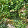 Downstream pool