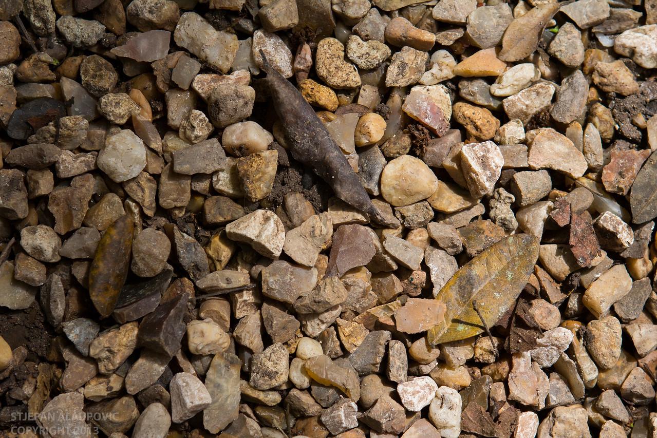 Beach Rock Texture in Belize