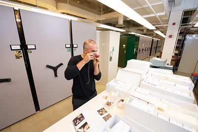 Peter Kennedy, Interim Curator of Fungi