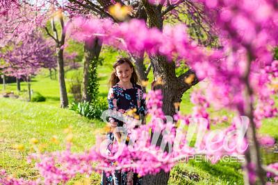 Bella Spring Session 2019 (1)