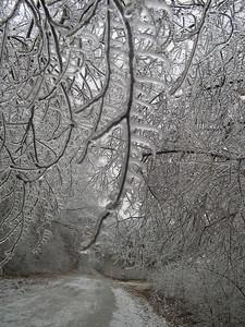 Ice Storm 2007 (32)