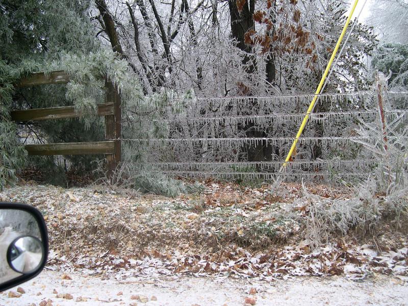 Ice Storm 2007 (40)