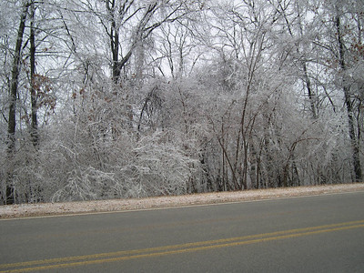 Ice Storm 2007 (20)
