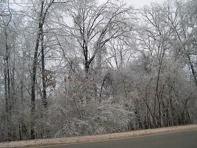 Ice Storm 2007 (21)
