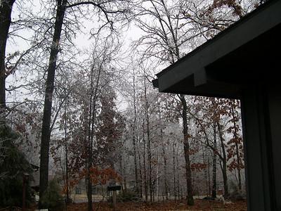 Ice Storm 2007 (4)