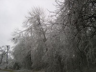 Ice Storm 2007 (13)