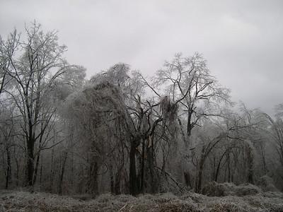 Ice Storm 2007 (35)