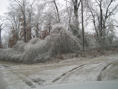 Ice Storm 2007 (33)