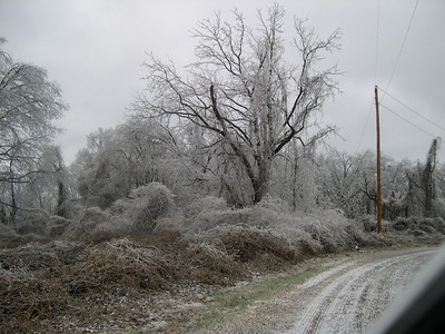 Ice Storm 2007 (36)