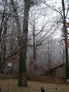Ice Storm 2007 (3)
